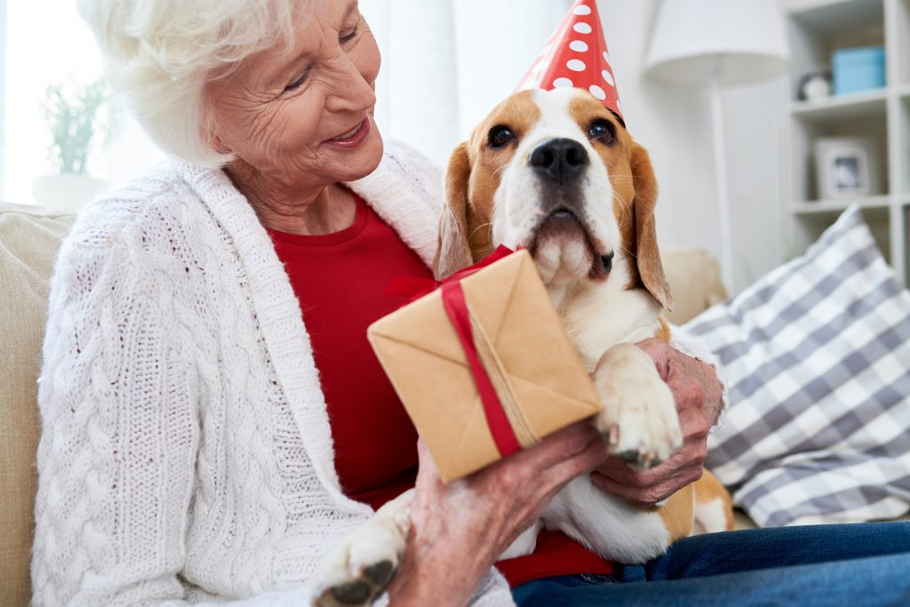Elderly woman with dog on its birthday